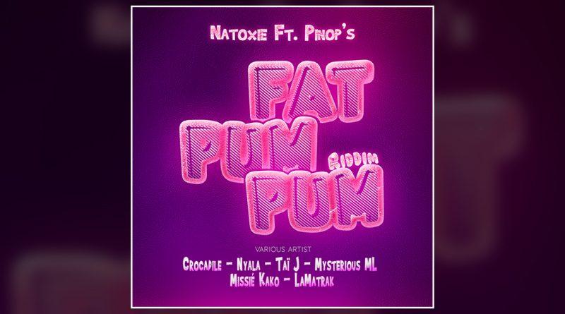 Fat Pum Pum Riddim by Natoxie & Dj Pinop's